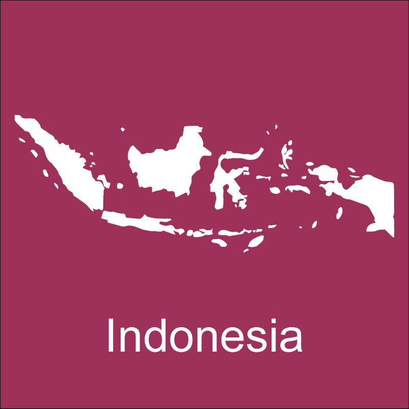 RECOVERY-indonesia.png